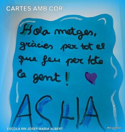 Asha, Cistella (2)
